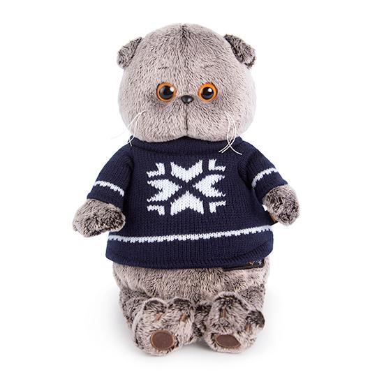 Кот Басик в свитере