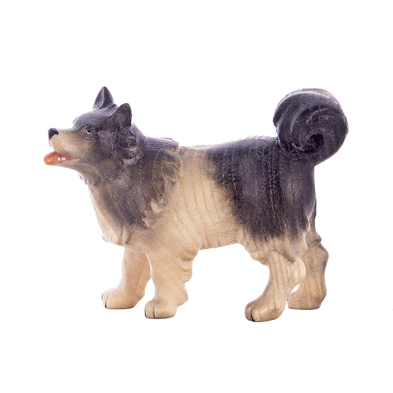 Собака пастуха