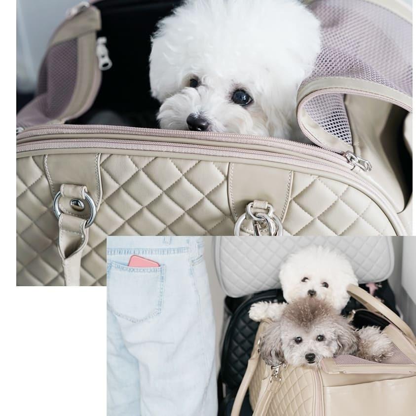 сумки для собак для перелета