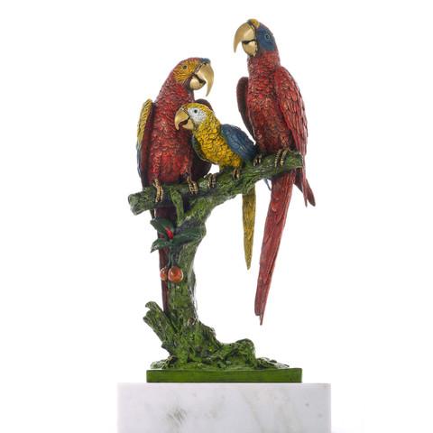 Семья попугаев