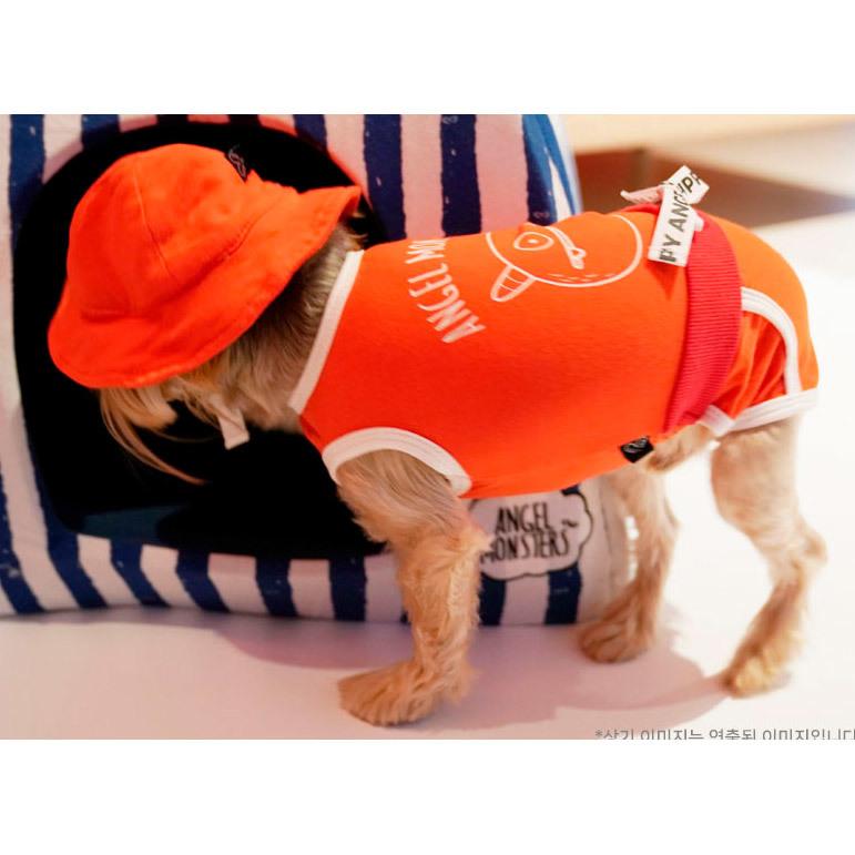 летние костюмы для собак