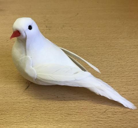 Птица голубь (длина с хвостом 10-12 см)