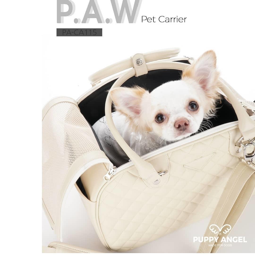 сумка для собак мелких