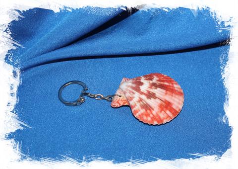 Брелок из ракушки Морской Гребешок сдвоенный (ассорти)