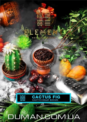 Табак Element Cactus Fig (Элемент Кактусовый Финик) |WATER 20г