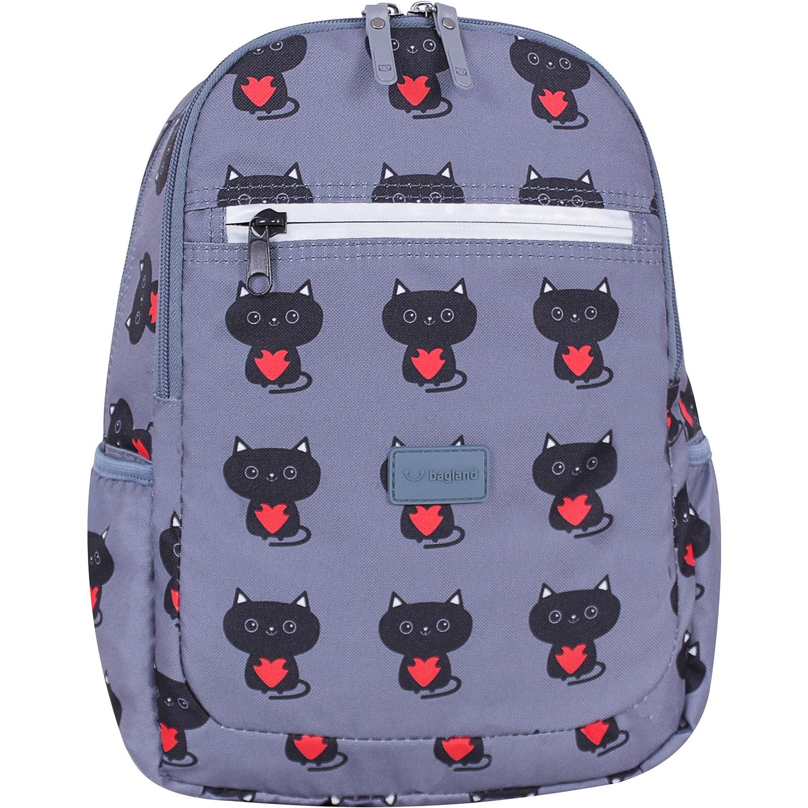 Детские рюкзаки Рюкзак Bagland Young 13 л. сублімація 750 (00510664) IMG_1668суб.750.JPG