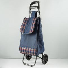 Тележка багажная ручная 25 кг (сумка), 50 кг (каркас) DT-20 синяя с красной клеткой