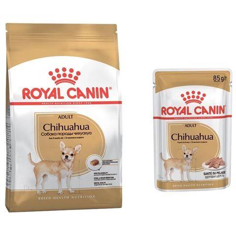 ПРОМО! Royal Canin сухой корм для собак породы Чихуахуа 1,5кг+пауч 85г