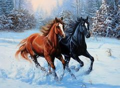 Картина раскраска по номерам 30x40 Два скакуна зимой