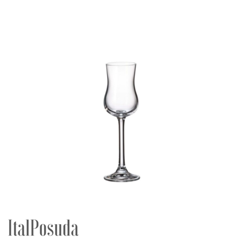 Набор рюмок для граппы Bohemia Gastro (Гастро), 6шт BOHEMIA16233