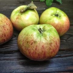 Яблоки сладкие Штрейфлинг (1 кг)