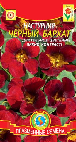 Семена Настурция Черный бархат, Одн