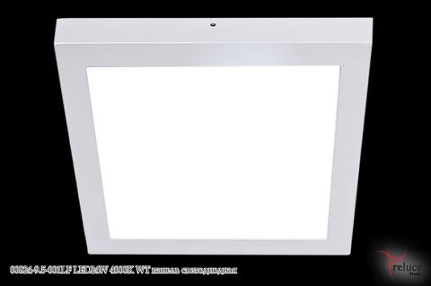 00824-9.5-001LF LED24W 4000K WT панель светодиодная