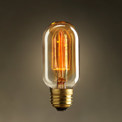 Лампочка Restoration Hardware T45
