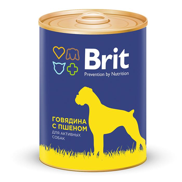 Brit Premium Консервы для собак, Brit Premium, с говядиной и пшеном d39322515cc4b94851e84ad4886498d7.jpg