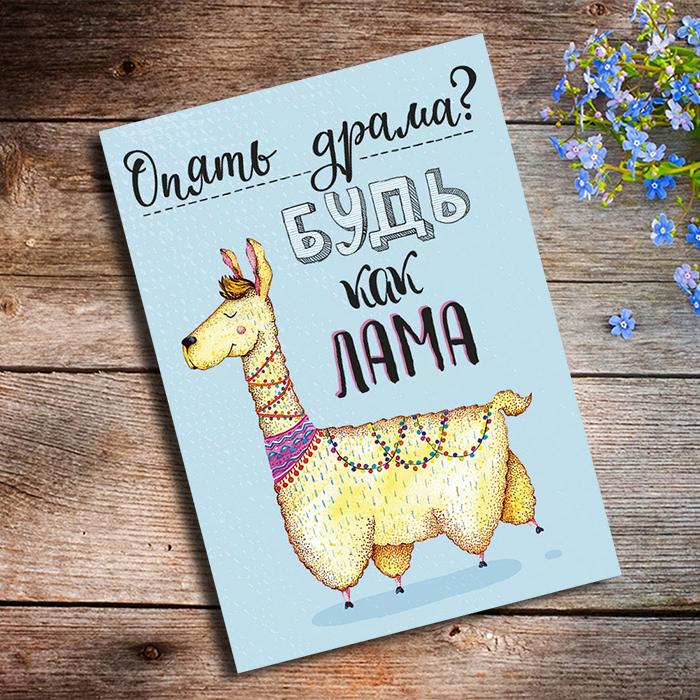 ОПЯТЬ ДРАМА БУДЬ КАК ЛАМА Купить оригинальную открытку в Перми
