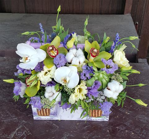 Ящик с цветами с Хлопком