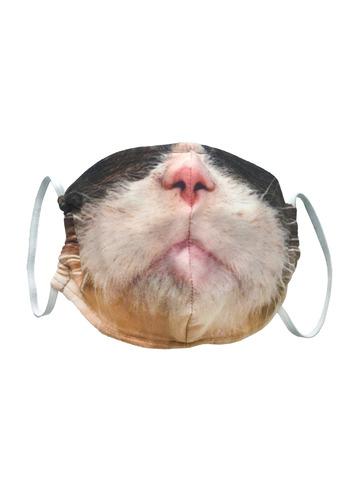 Маска Серьезный кот-2