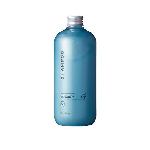 Шампунь FIT YOUR SKIN San tteut Shampoo 500ml с мятой