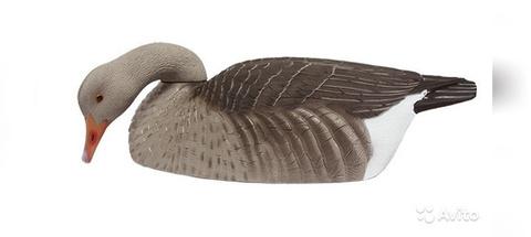 Скорлупки серого гуся GHG