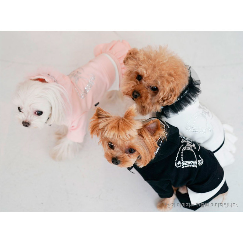 Гламурные костюмы для собак