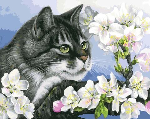 Картина раскраска по номерам 40x50 Серая кошка в цветах
