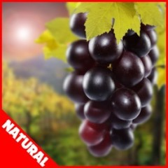 Ароматизатор FlavorWest Grape (Natural)