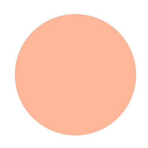 Меловая краска HomeArt, №23 Коралловая роза, ProArt