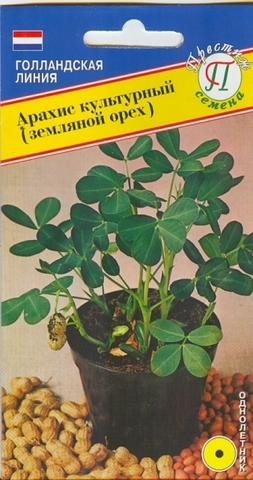 Семена Арахис культурный