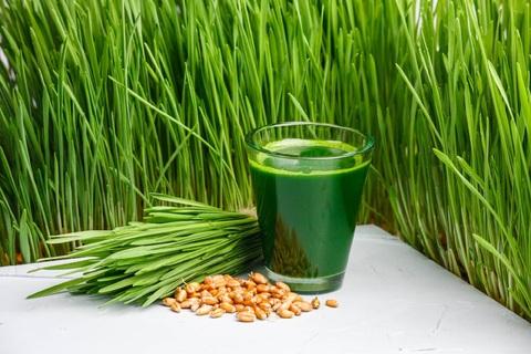 Сок из ростков пшеницы - Витграс