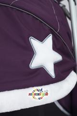 Санки коляска PIKATE Toy «Пурпурный»