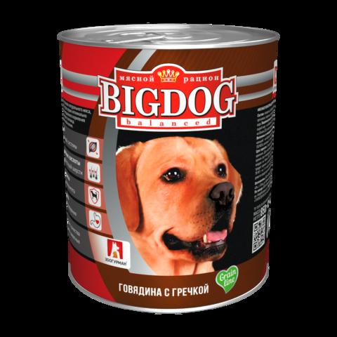 Зоогурман Big dog Консервы для собак с говядиной и гречкой