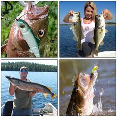 Набор приманок для ловли хищной рыбы «Banjo 006 Minnow»