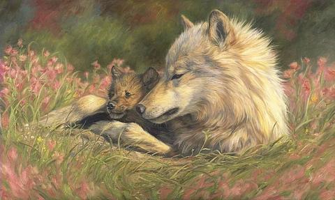 98847 Поздняя весна (волки)