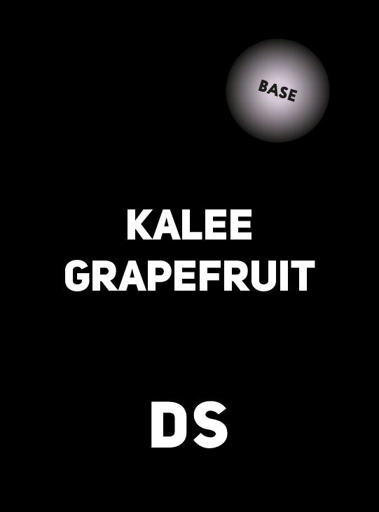 Accessory DS BASE KALEE GRAPEFRUIT 100