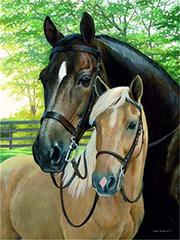 Картина раскраска по номерам 30x40 Две лошади в загоне