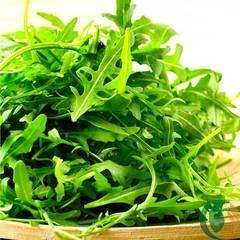 Семена руколы (индау) Колтивата, Enza Zaden, 0,5 гр.