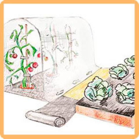 Защитная полоса для междурядий от сорняков