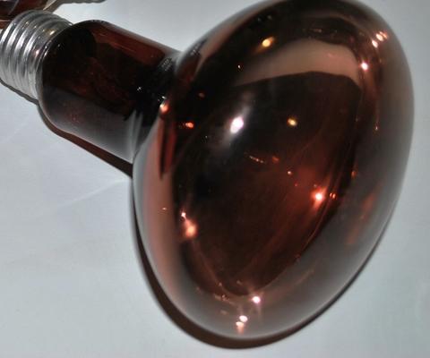Инфракрасная лампа 100Вт