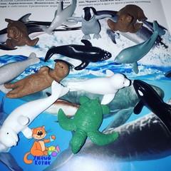 Набор фигурок для сенсорной коробки Детеныши обитателей моря, Safari Ltd.
