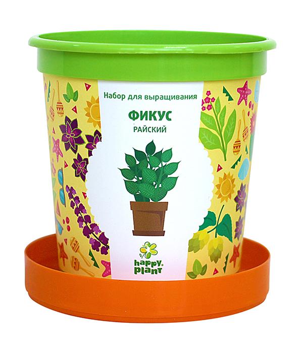 Набор для выращивания в горшочках Happy Plant Фикус райский