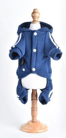 Royal Dog спортивный костюм синий M