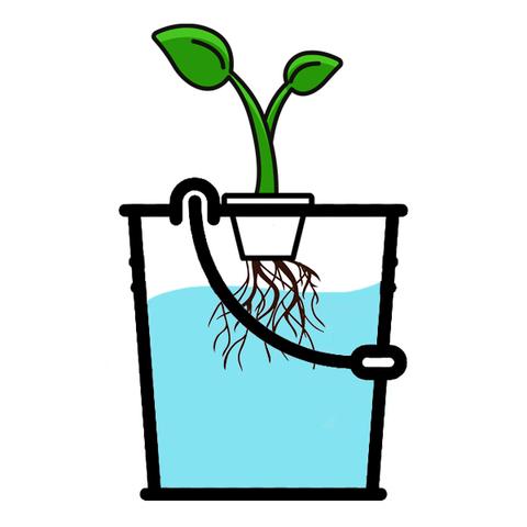 Коплекты для выращивания растений методом гидропоники под ключ