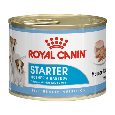 Royal Canin Starter Консервы для щенков, беременных и кормящих сук, Паштет