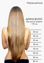 Натуральные волосы на заколках тон 613 натуральный блонд