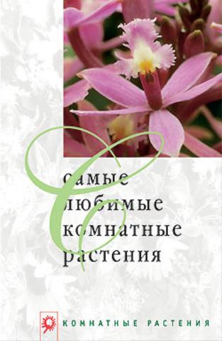 Самые любимые комнатные растения