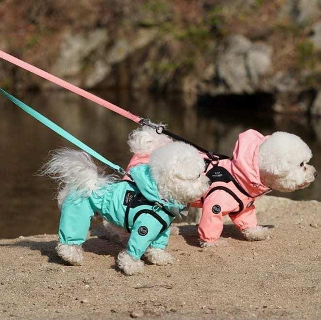 004 PA - Поводок для собак