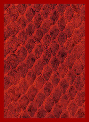 Legion Supplies - Dragon Hide Red Протекторы 50 штук