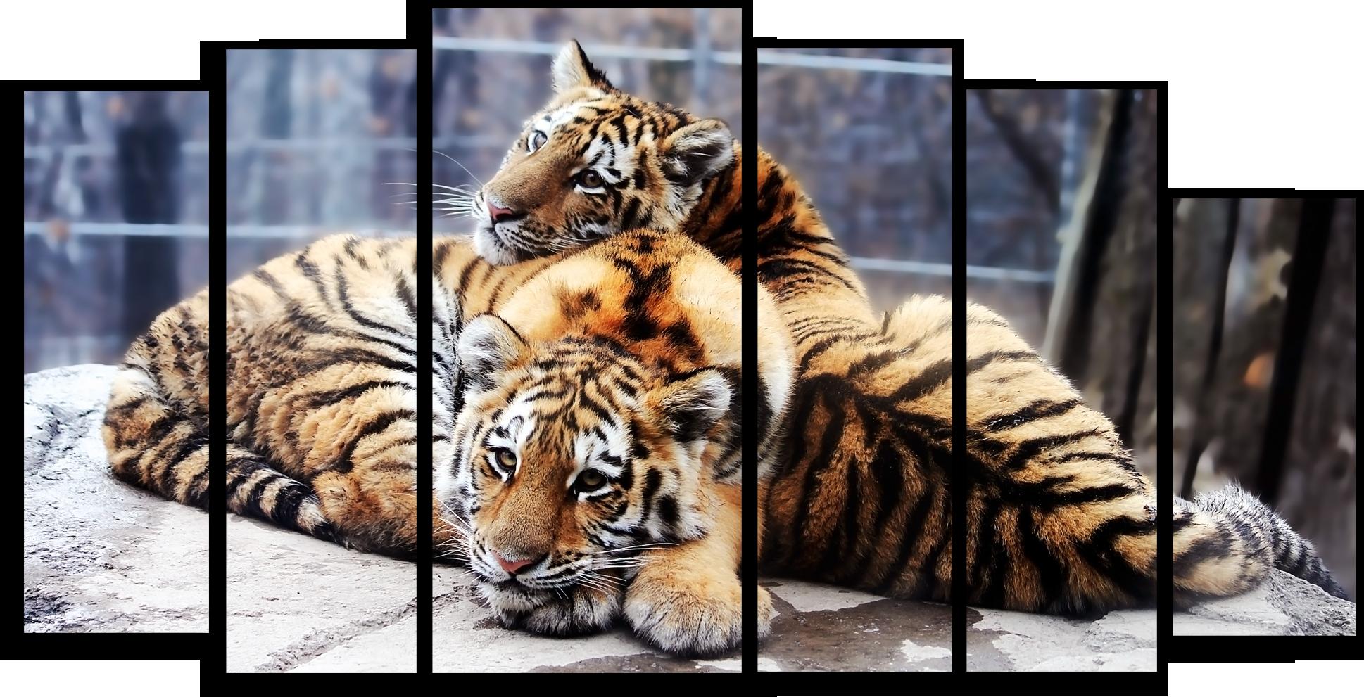 """Модульные картины Модульная картина """"Два тигра"""" М335.png"""