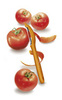 Овощечистка Victorinox, оранжевая